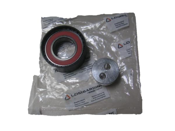 Tendeur courroie de distribution moteur Lombardini DCI Mister VSP pièces voiture sans permis